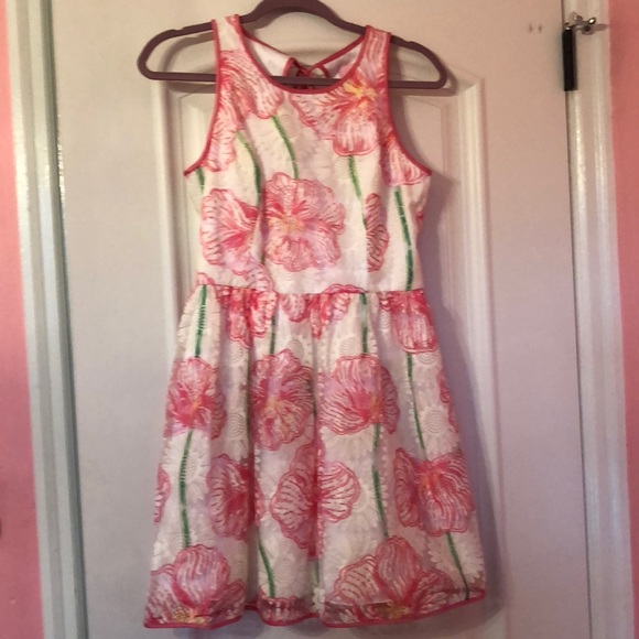 Lilly Pulitzer Dresses & Skirts - Lilly Pulitzer dress never worn